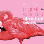 Expo : Christopher Evans  » Digital woodcuts »