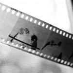 Scanner vos films : quelle option choisir?