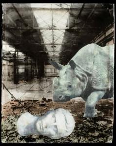 La galerie Négatif + accueille Vivian van Blerk