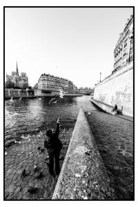 La Galerie Négatif + accueille Guillaume Atman