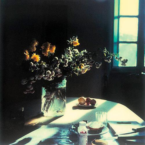 Tarkovsky-Polaroid