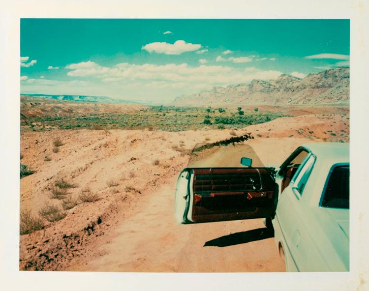 Wim Wenders - Polaroid